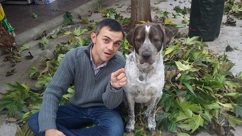 albert-les-plantes-més-gos